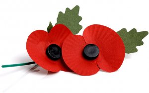 Ways to support this year's Poppy Appeal